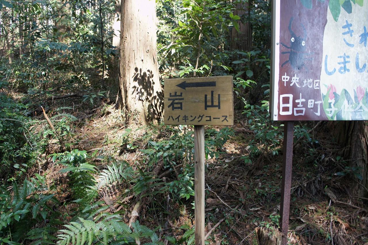 iwayama01.jpg