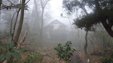 千の森17