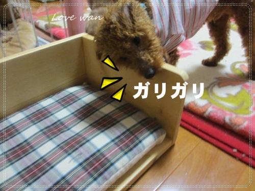 mini2IMG_5164.jpg