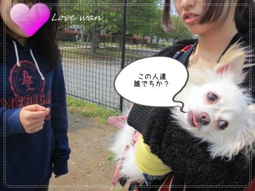 mini2IMG_5813.jpg