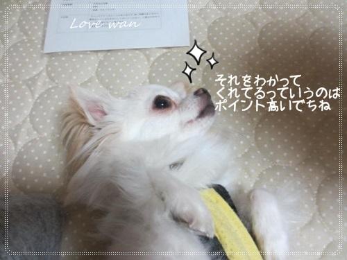 mini2IMG_5827.jpg