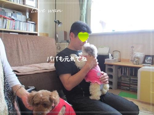 mini2IMG_6171.jpg