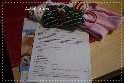 mini2P1290645.jpg