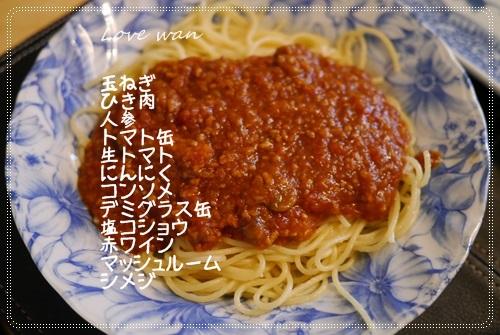 mini2P1320104.jpg