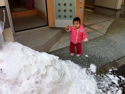 雪がこんもり!