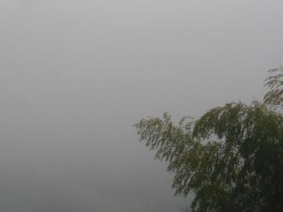3月27日真っ白な早朝
