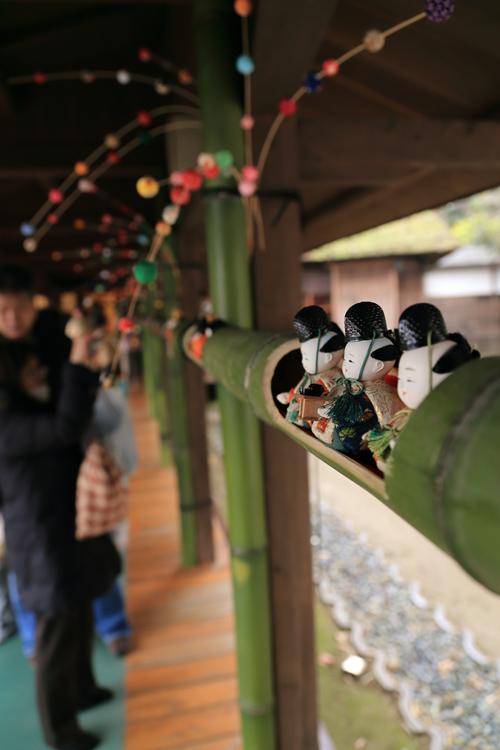 Canon EOS6D (開成町)