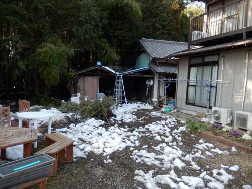 2014.2.21 大雪の跡(自宅) 020