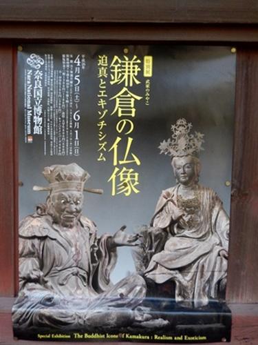 2014.3.9 鎌倉寿福寺周辺 (鎌足桜) 050 (20)
