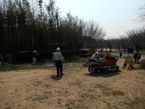 2014.3.12 青葉の森公園 (鎌足桜) 041 (19)