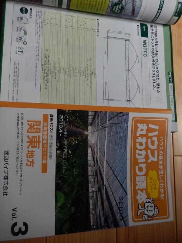 DSCN3246 (600x800)