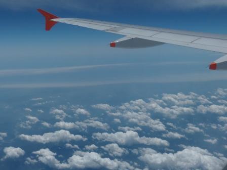 飛行機からの眺め 翼と雲