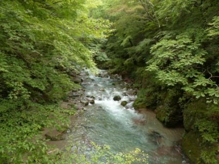 小田深山渓谷 風景 3