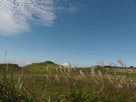 四国カルスト 風景 8