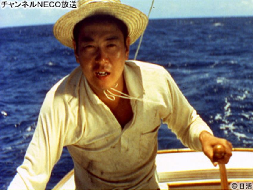 太平洋ひとりぼっち」(1963年 ... : 二歳 本 : すべての講義