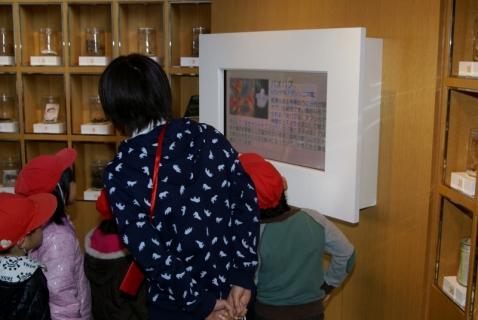 2007-09-21 平成25年度赤組フラワーミュジアム-26年2月19日 041 (800x536) (2)