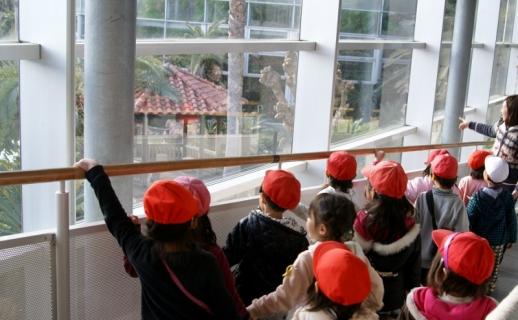 2007-09-21 平成25年度赤組フラワーミュジアム-26年2月19日 071 (800x494)