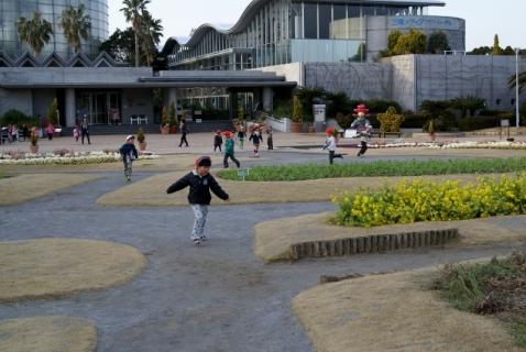 2007-09-21 平成25年度赤組フラワーミュジアム-26年2月19日 105 (800x536)