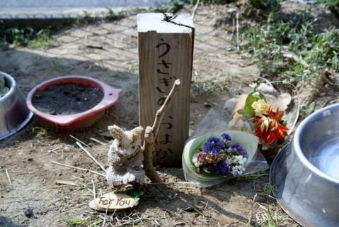 2007-10-11 25年度3月12日桃1組送別、うさぎ墓前 006 (800x535)