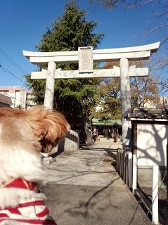 素盞嗚神社(すさのおじんじゃ)