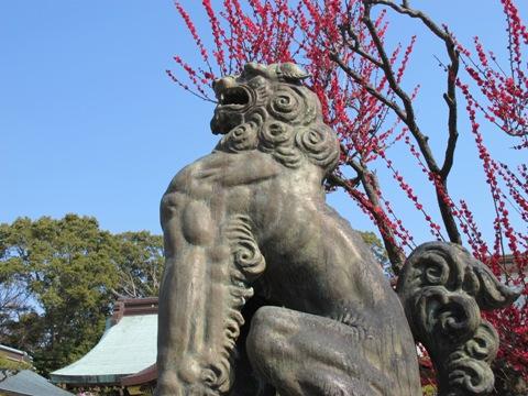 結城神社 037