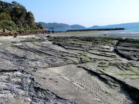 熊野三山 370