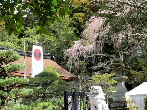熊野三山 044