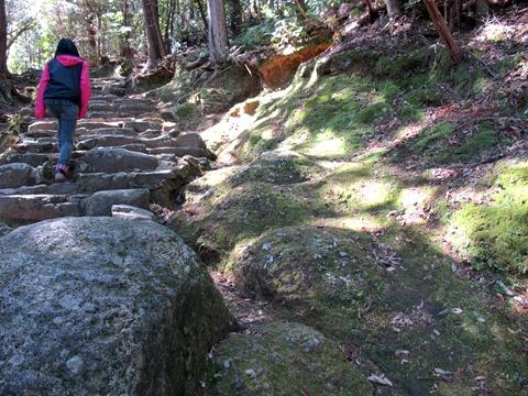熊野三山 099