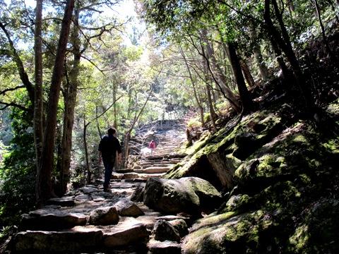 熊野三山 100