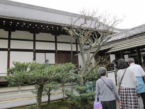 京都東山 238