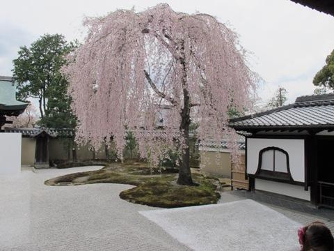 京都東山 240