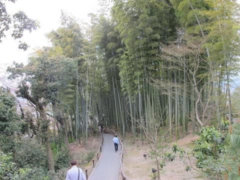 京都東山 258