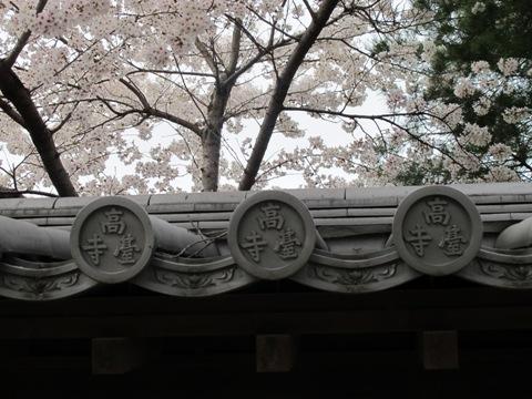 京都東山 259