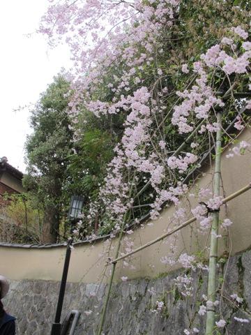 京都東山 282