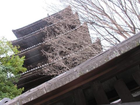 京都東山 295