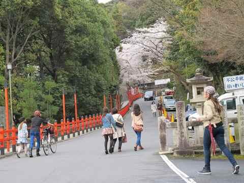 京都東山 299