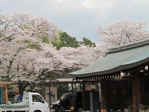京都東山 303