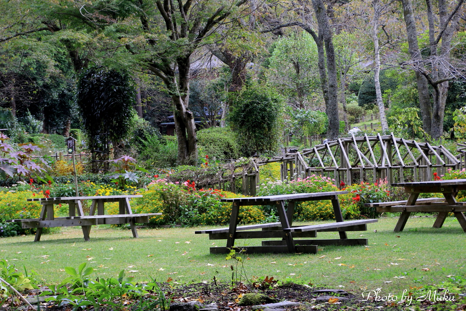 2014.10.20 秩父宮記念公園 (静岡県御殿場市)