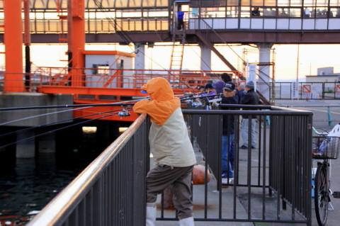 2014.10.29 釣り人 (久里浜港:神奈川県横須賀市)