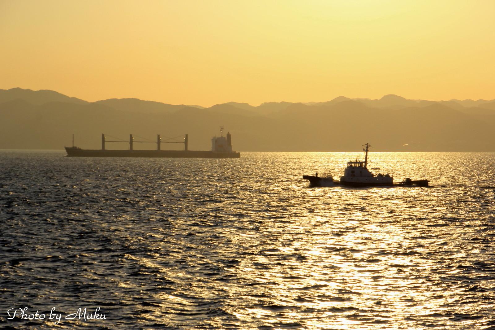 2014.10.29 夜明けの東京湾 (東京湾フェリーから)