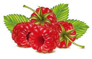 fruits-32.jpg