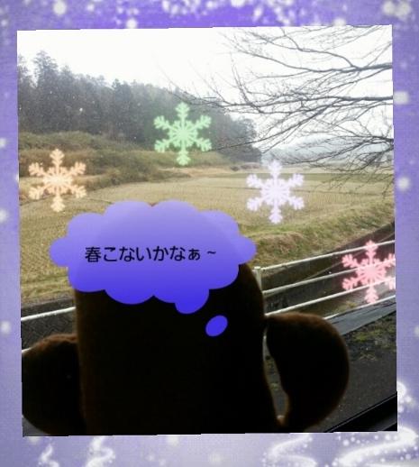 2014-03-07_ (481x640)