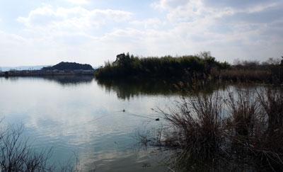 14.3.15水上池