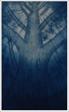 西井藍11.6.27