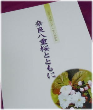 yaezakura10.jpg