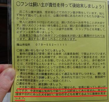 篠山市の狂犬病予防接種のおまけ
