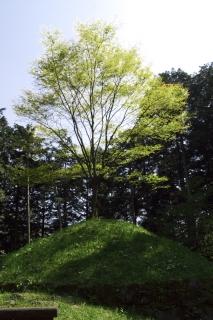 旧東海道:畑宿一里塚(復元)