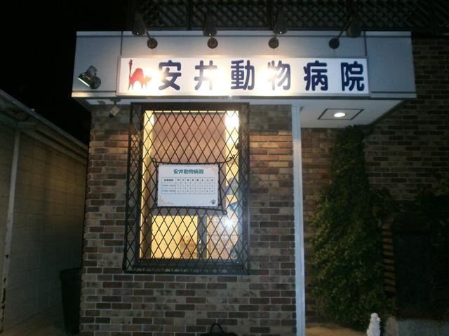 140313n_01.jpg