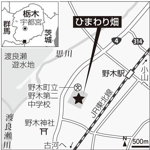 ひまわり畑の地図