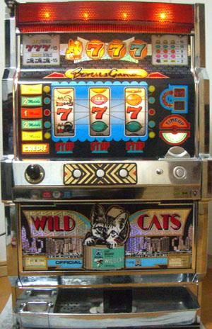 wildcats1.jpg